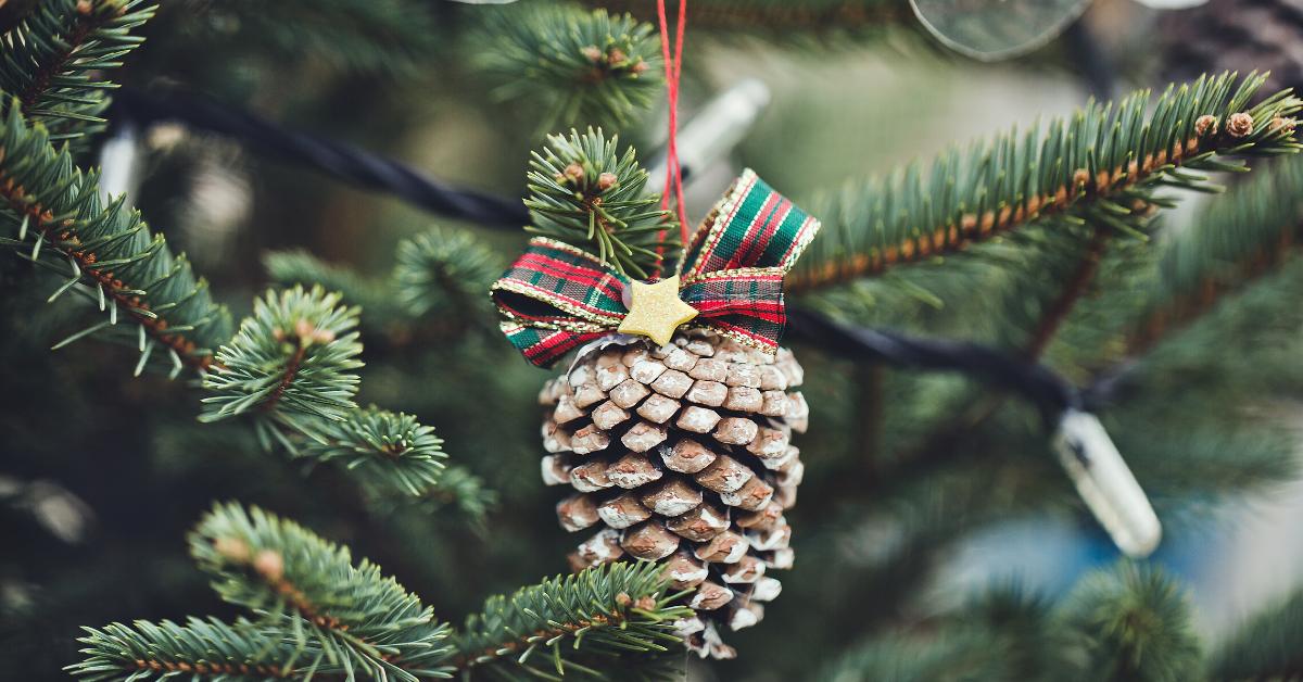 Lavoretti di Natale con pigne